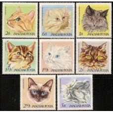 1968 Hungary Mi.2387-2394 Cats 8,50 €