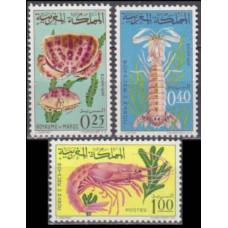 1965 Morocco Mi.553-555 Sea fauna 7,00