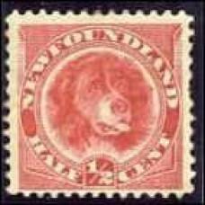 1887 Newfoundland Mi.35b (80.00) €