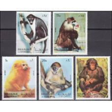 1972 Sharjah Mi.1012-1016 Fauna 3,20 €