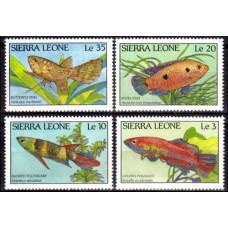 1988 Sierra Leone Mi.1081-1084 Sea fauna 6.50 €
